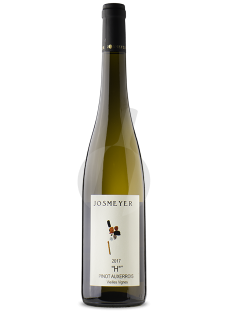 Pinot Auxerrois H vv