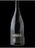 Carbone 14 Magnum
